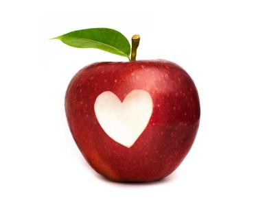Artikel om hjertet og kredsløbet